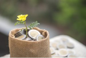 Clean your finances this spring